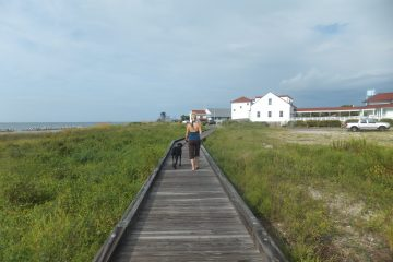 A blond woman and black lab walk away on a wooden plank walkway with beach grass on either side.