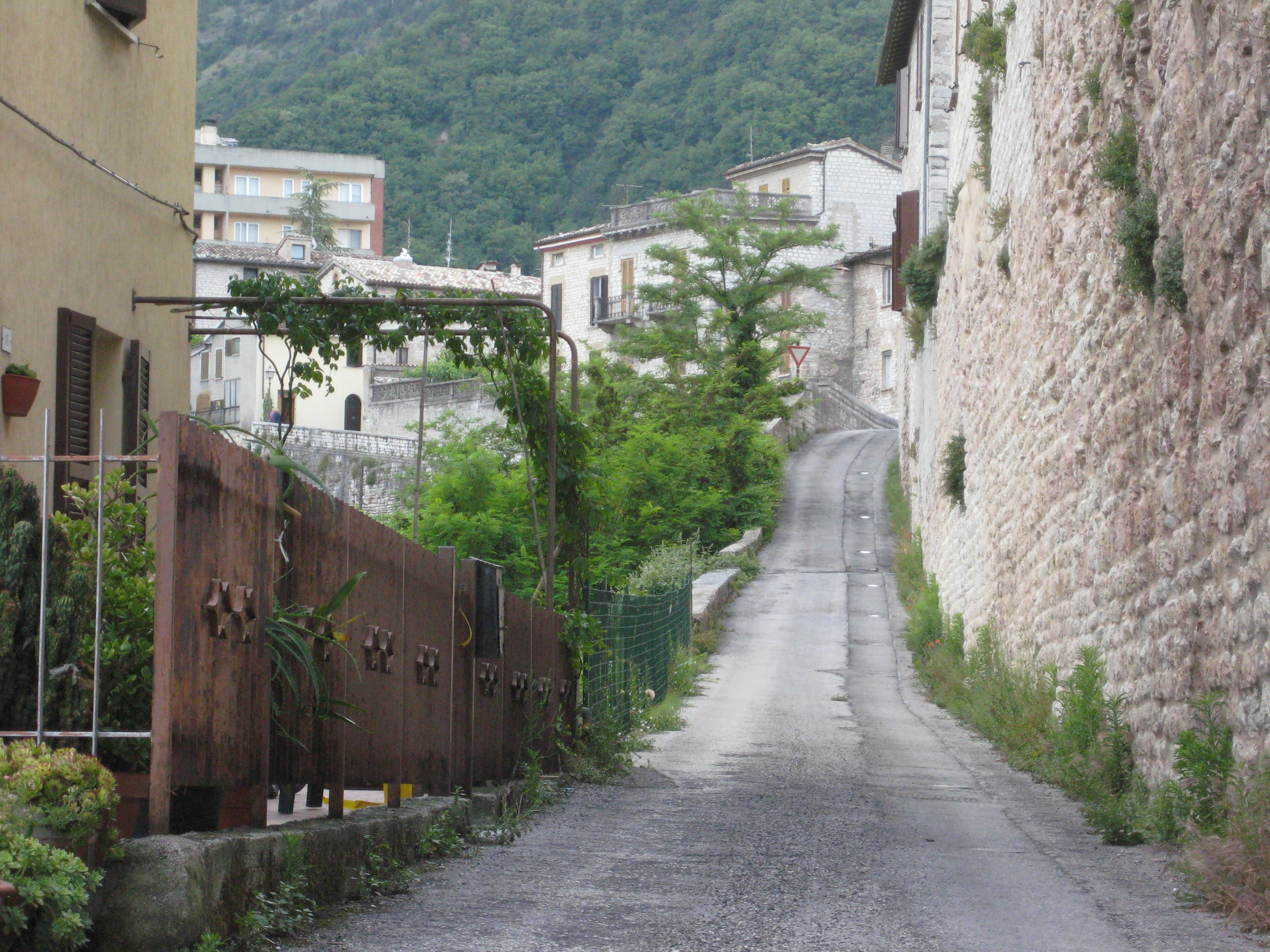 A narrow, paved road in Italy leads upwards and away with a white stone wall to the right and green trees to left.