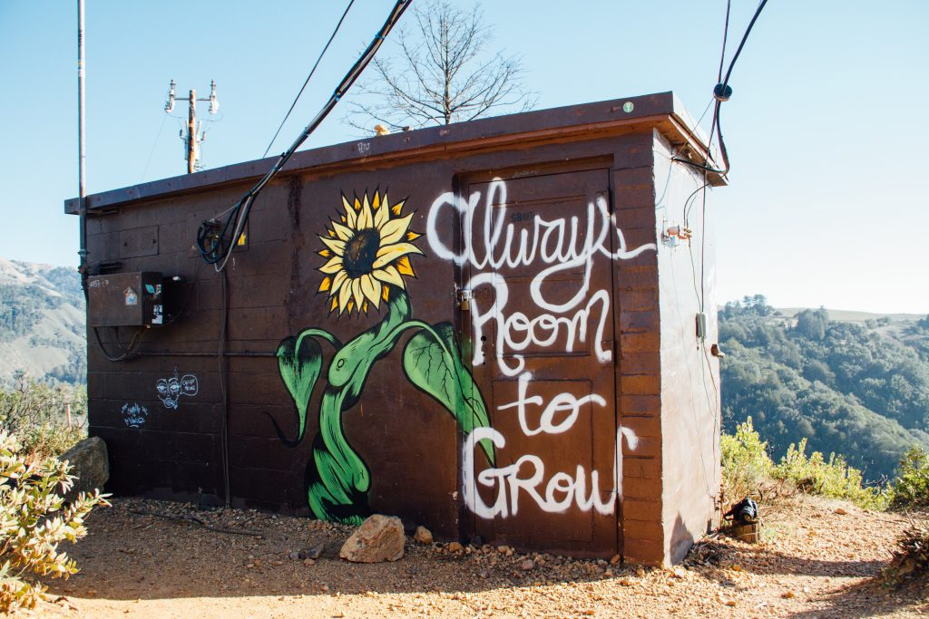 A brown outdoor shed has a painted sunflower and the words Always Room to Grow to reflect Vision in branding.