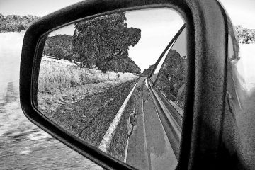 black and white image of a rear view window from a car showing trees and a road