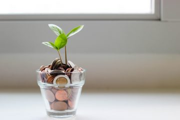 a glass jar is filled with coins and has a small green seedling plant growing out of it